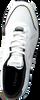 CRUYFF CLASSICS Baskets basses COSMO en blanc  - small