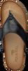 MJUS Tongs 463004 en noir - small