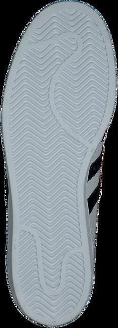ADIDAS Baskets SUPERSTAR HEREN en blanc - large