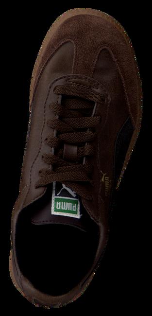 Bruine PUMA Sneakers LIGA KIDS  - large