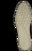 MCGREGOR Bottillons TOLBERT en cognac - small