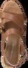 TOMMY HILFIGER Sandales CORPORATE WEDGE en cognac  - small