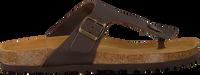 Bruine MAZZELTOV. Slippers 19-0007  - medium