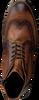 GIORGIO Bottines à lacets HE35641 en camel  - small