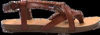 BLOWFISH MALIBU GRANOLA - medium