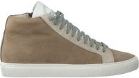Beige P448 Hoge sneaker STAR MEN  - medium