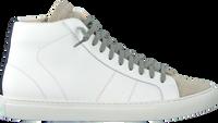 Witte P448 Hoge sneaker STAR2.0 MEN  - medium