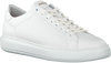 Witte BLACKSTONE Lage sneakers TG40  - small