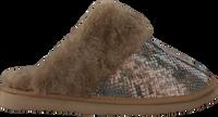Taupe WARMBAT Pantoffels FLURRY  - medium