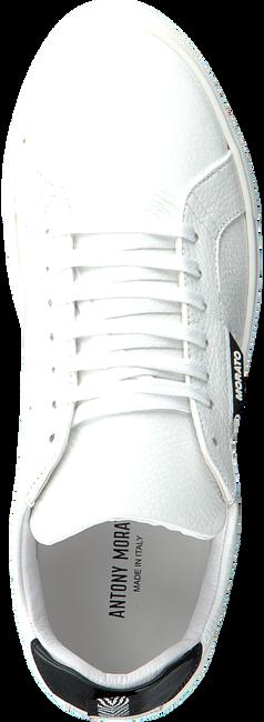 ANTONY MORATO Baskets basses MMFW01248 en blanc  - large
