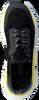 CALVIN KLEIN Baskets basses HENSLEY en noir  - small