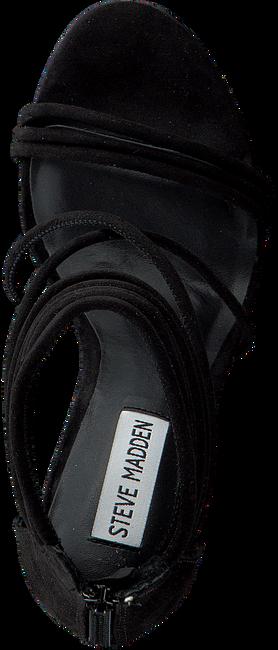 Zwarte STEVE MADDEN Sandalen ANSWER  - large
