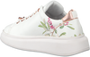 TED BAKER Baskets AILBE en blanc - small