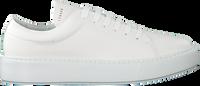 COPENHAGEN FOOTWEAR Baskets basses CPH407M en blanc  - medium
