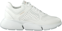 Witte COPENHAGEN STUDIOS Lage sneakers CPH411  - medium