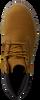 Camel TIMBERLAND Lange laarzen 6IN PREMIUM  - small