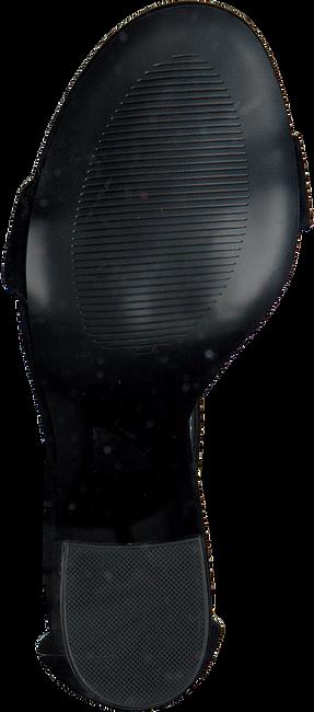 Zwarte STEVE MADDEN Sandalen FRIDAY  - large