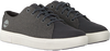Grijze TIMBERLAND Lage sneakers AMHERST FLEXI KNIT OX  - small