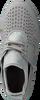 TIMBERLAND Baskets KIRI UP MICROFIBER en gris - small