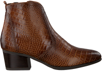 GABOR Bottines 680.1 en cognac  - medium