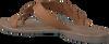 Cognac LAZAMANI Slippers 75.283  - small