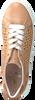 Beige MARIPE Lage sneakers 30421  - small