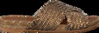 KANNA Tongs 20191 en bronze  - medium