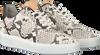 FRED DE LA BRETONIERE Baskets basses 101010130 FRS0673 en blanc  - small
