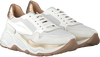 Witte LAURA BELLARIVA Lage sneakers 5040D4S  - small