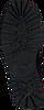 NUBIKK Bottines à lacets FAE STELLA en noir  - small