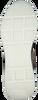 BARRACUDA Baskets BU3242 en gris  - small