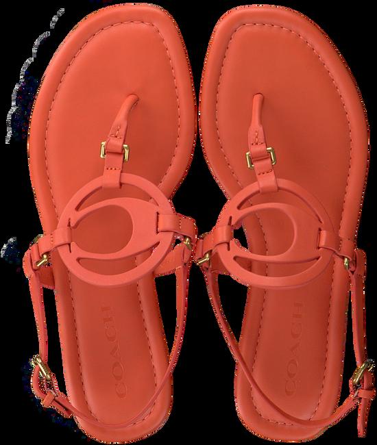 COACH Sandales JERI LEATHER SANDAL en orange  - large