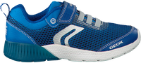 GEOX Baskets J826PB en bleu - medium