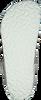 white BIRKENSTOCK PAPILLIO shoe GIZEH ANIMAL FASCINATION  - small
