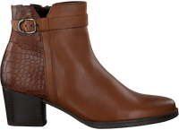 GABOR Bottines 834 en cognac  - medium