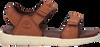 TIMBERLAND Sandales NUBBLE SANDAL LTHR 2 STRAP en marron - small