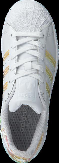 ADIDAS Baskets SUPERSTAR J en blanc  - large
