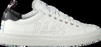 P448 Baskets basses SHANE MEN en blanc  - medium