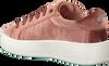 STEVE MADDEN Baskets BERTIE-V en rose - small