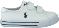 POLO RALPH LAUREN Baskets SLATER en blanc - medium