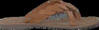 Cognac LAZAMANI Slippers 75.283  - medium