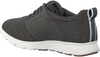 TIMBERLAND Baskets basses KILLINGTON FLEXI KNIT OX en gris  - small