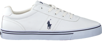 POLO RALPH LAUREN Baskets basses HANFORD en blanc  - medium