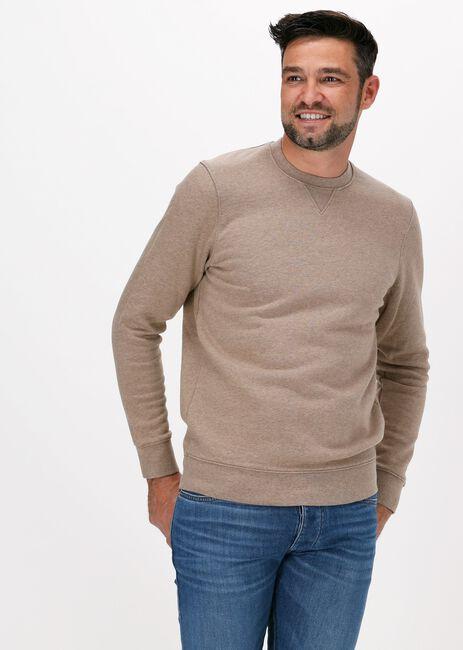 Bruine PROFUOMO Sweater JURY - large