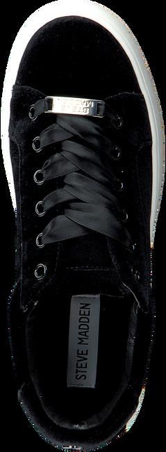 STEVE MADDEN Baskets BERTIE-V en noir - large