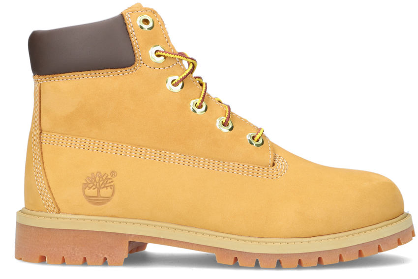 Camel TIMBERLAND Veterboots 6IN PREMIUM WP DAMES  - larger