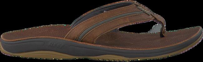 REEF Tongs R2231 en marron - large
