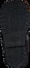 TOMMY HILFIGER Bottines à lacets LACE UP BOOTIE en bleu  - small