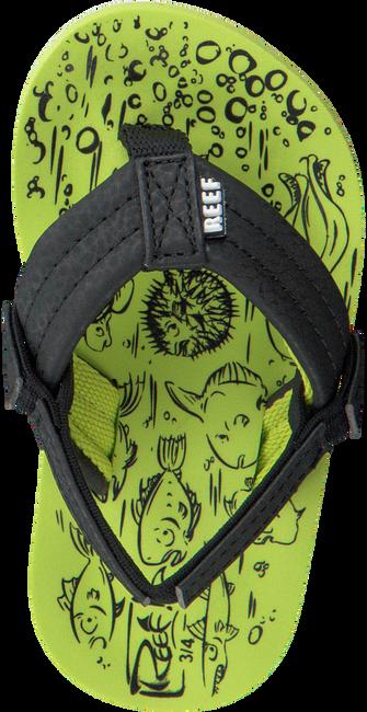 Groene REEF Slippers GROM REEF FOOTPRINTS  - large