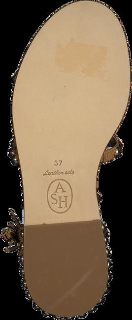 Cognac ASH Sandalen POWER  - large